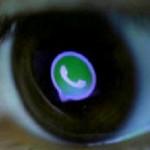 El nuevo y molesto  WhatsApp