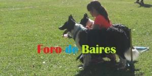 """KiroDisc"",el deporte canino"