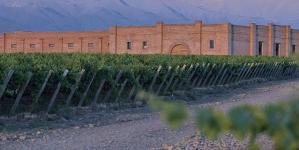 Andeluna 1300 Merlot 2016 Un Vino Fresco y Liviano para acompañar la Primavera