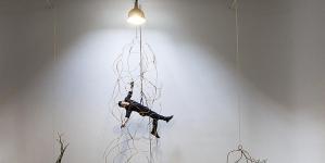 Marcelo Toledo, el arte como regeneración