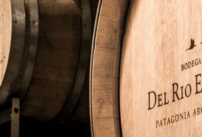 Verum Patagonia Reserva Pinot Noir 2016 de Bodega Del Río Elorza
