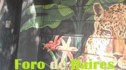 Arte Urbano en Villa Crespo