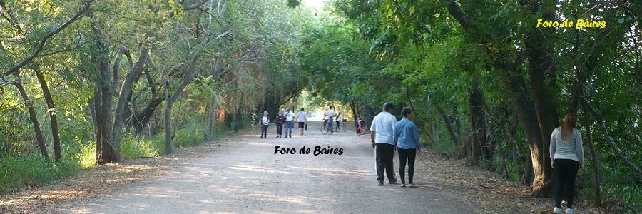El sentido del caminar
