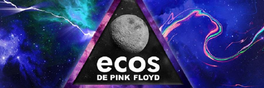 """Entrevista a la banda tributo """"ECOS/ Tributo a Pink Floyd"""""""