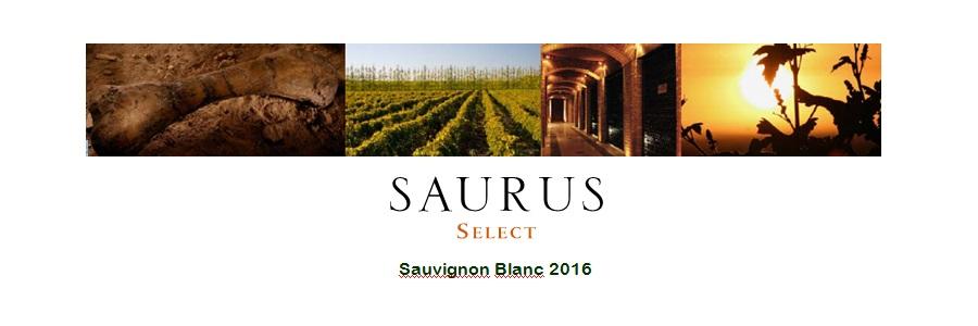 "El vino ""Saurus Select"""