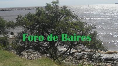 Eventos en audio: Los encantos de Costanera Sur