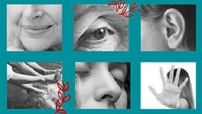 Solas, aún acompañadas: un libro que invita a la reflexión y a la transformación