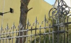 El Centro Ana Frank