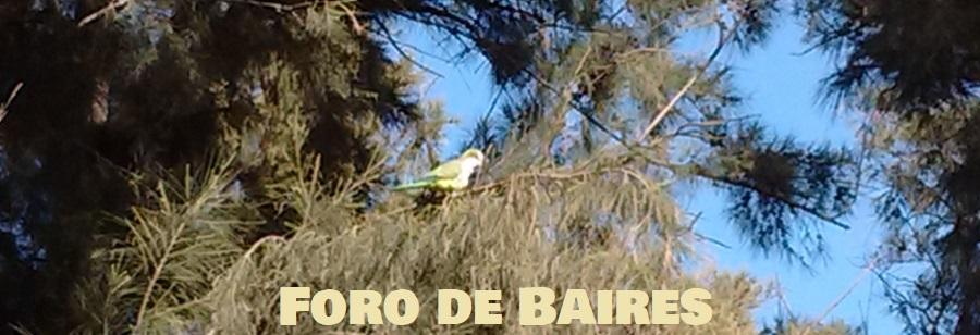 El Rosedal de Palermo: el disfrute de recobrar la libertad en cuarentena
