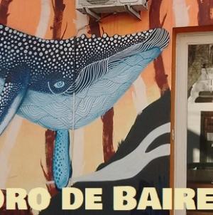 Los animales graffiteados de Palermo